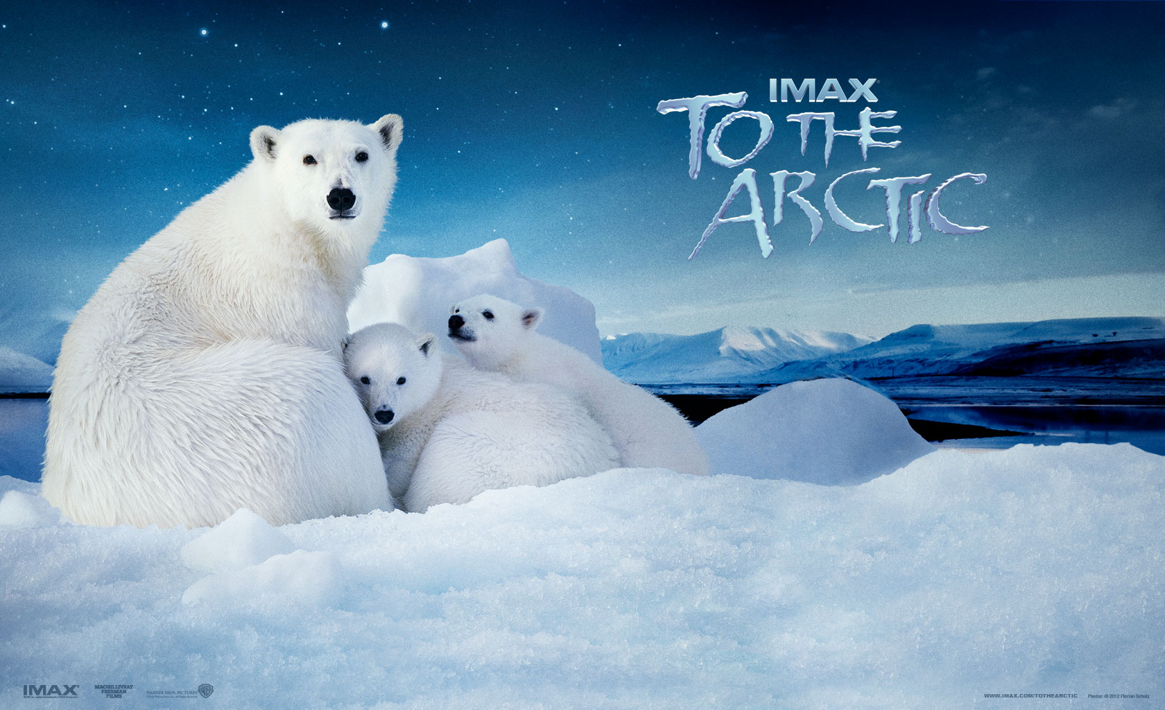 IMAX  To The Arctic   ...