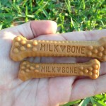 Milk-Bone Brushing Chews – The Daily Dental Treat! + $25 Visa GC Giveaway! {US}
