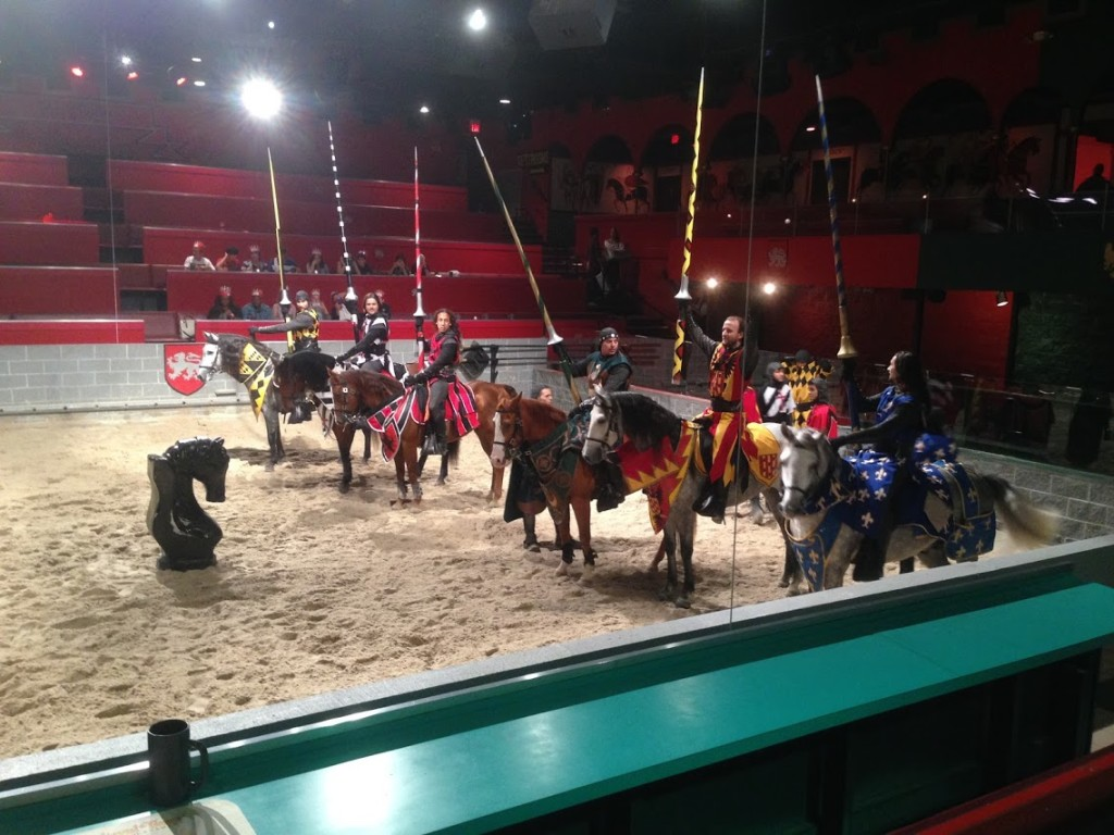 the knights of medieval times