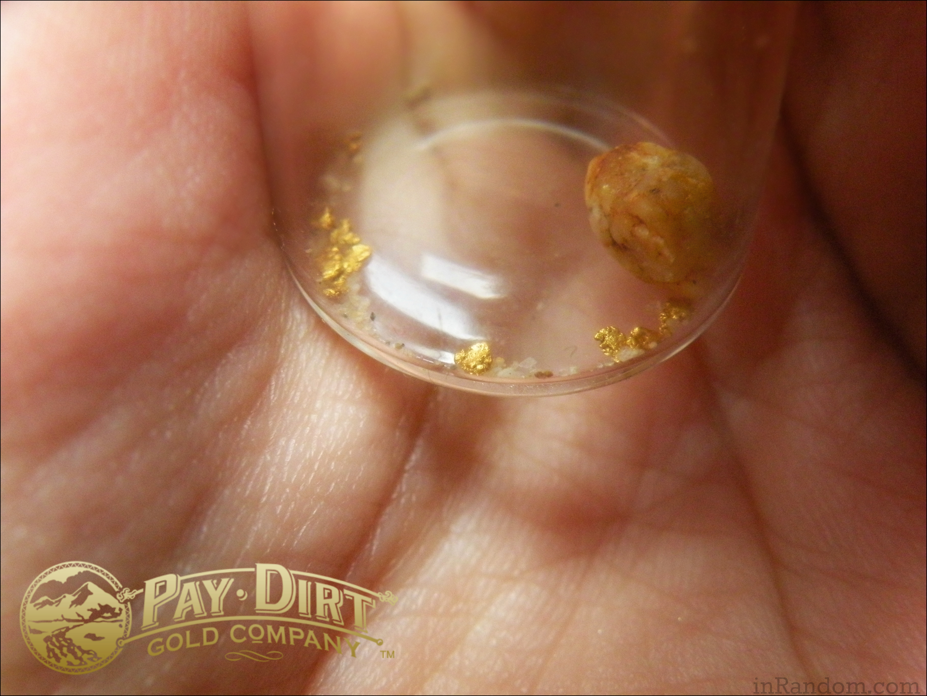 gold flakes Pay Dirt