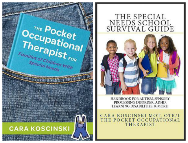 Pocket Ot The Special Needs School Survival Guide